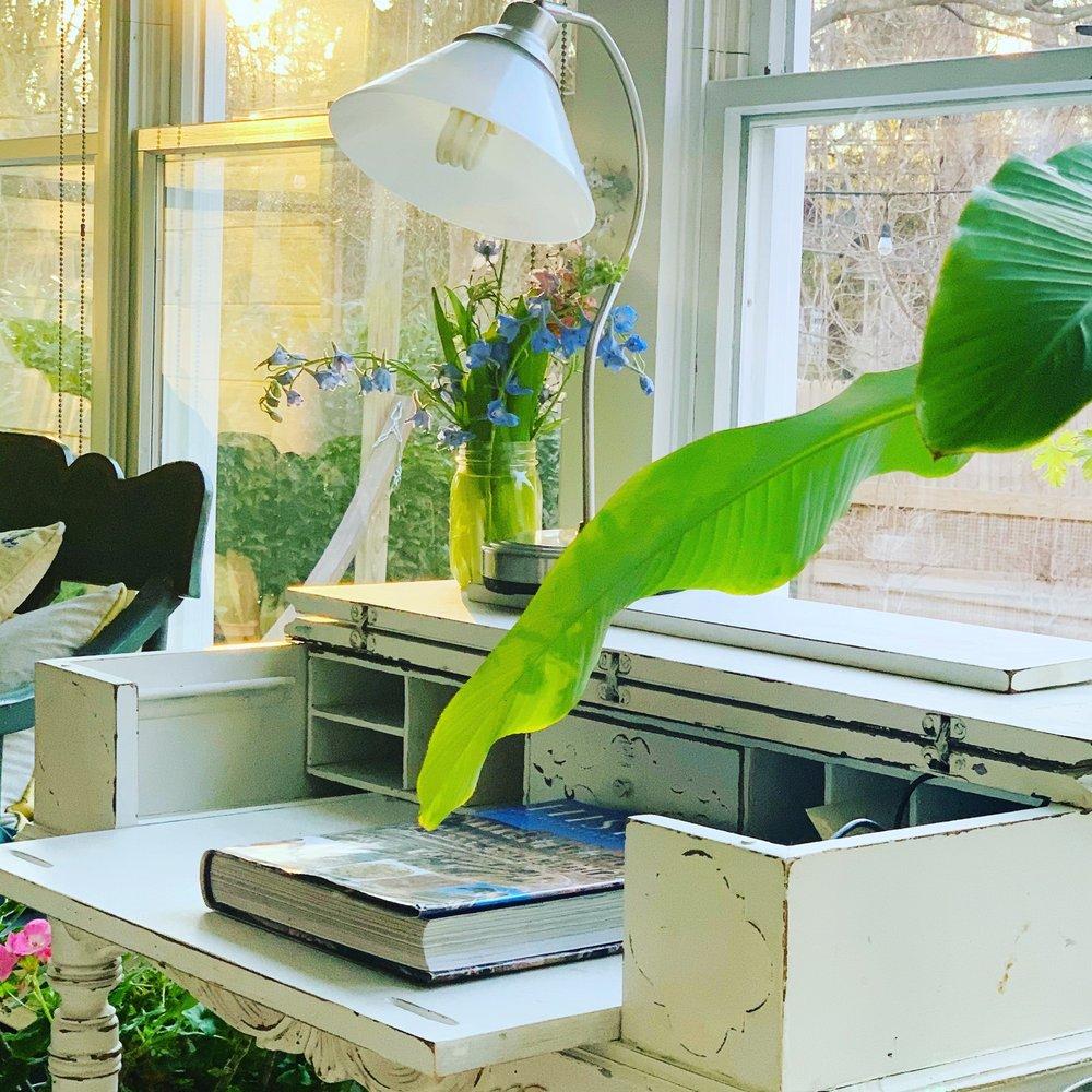 The Botaniste Hamptons: East Hampton, NY