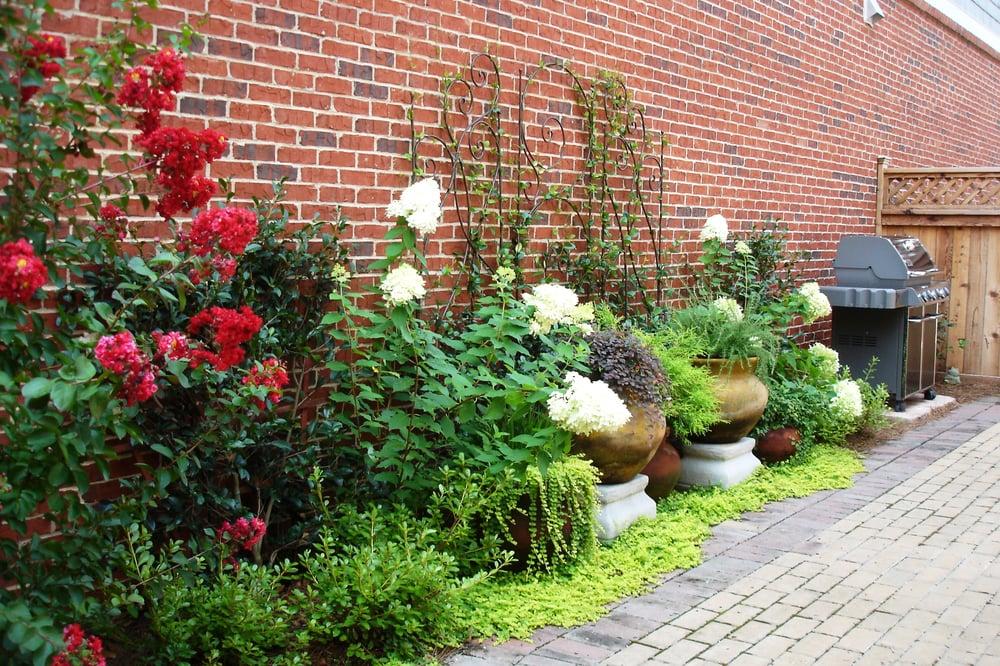 Plants Creative Landscapes - 31 Photos - Landscaping - 425 E College Ave Decatur Decatur GA ...