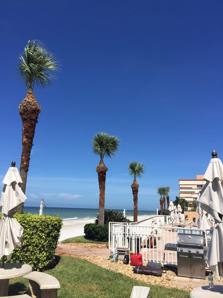 On Demand Tree Service: 510 34th St S, St Petersburg, FL