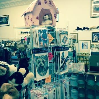 Captivating Canines 35 Photos Pet Stores 12 E Main St
