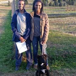 photo of moose apple christmas tree farm berryville va united states dogs - Moose Apple Christmas Tree Farm