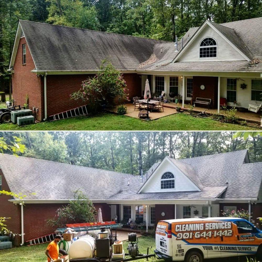 Carpet Doctor: Millington, TN