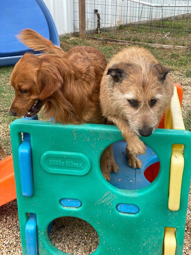 Bluebonnet Pet Ranch: 11885 Golden Mist, College Station, TX