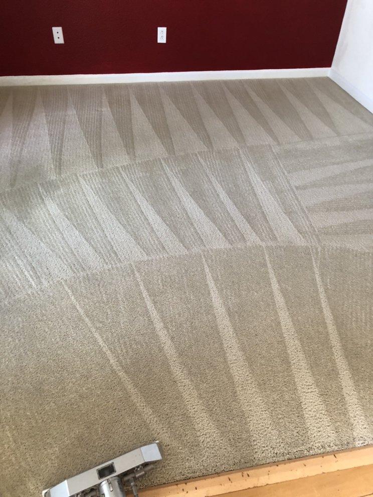 Next Level Carpet Care