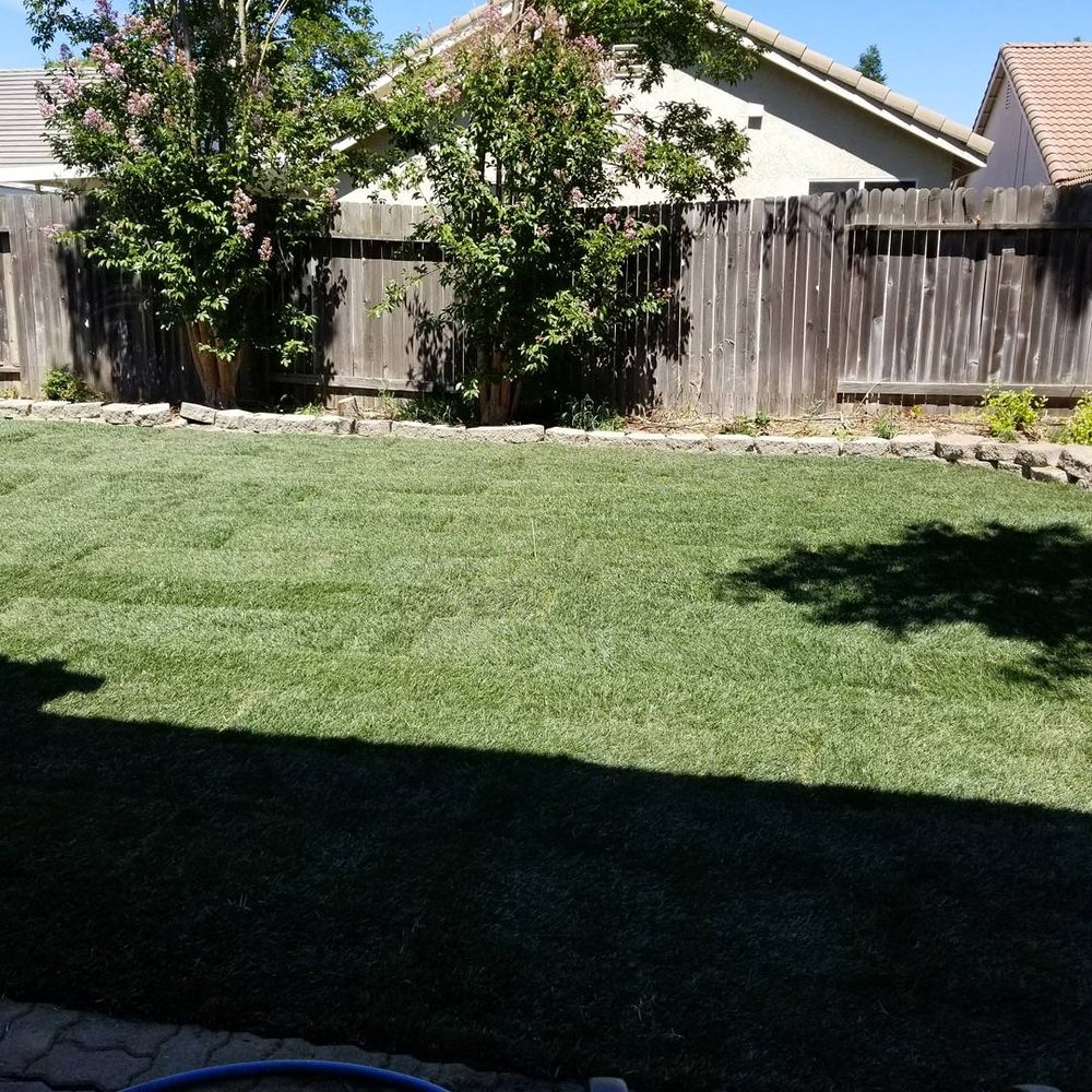 act of sod 19 reviews landscaping 1017 l st downtown