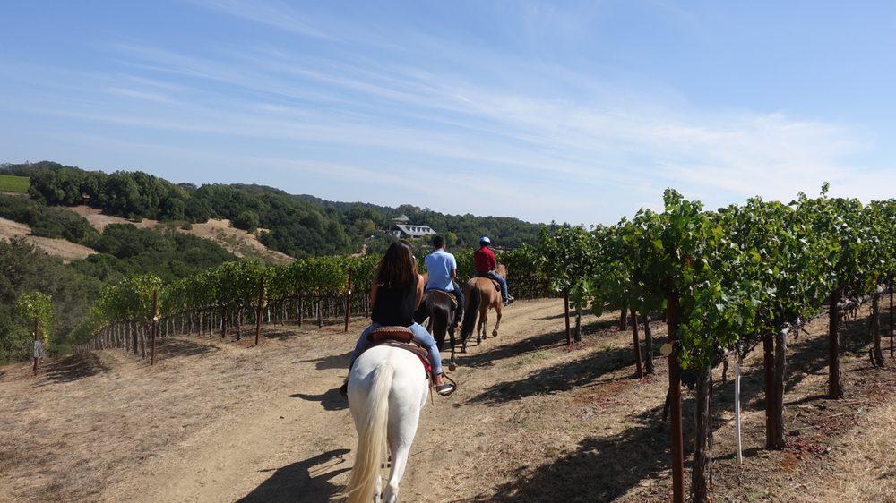Wine country trail rides 41 photos 17 reviews for Where can i go horseback riding near me