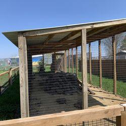 Summerfield Zoo - 49 Photos - Zoos - 3088 Flora Rd