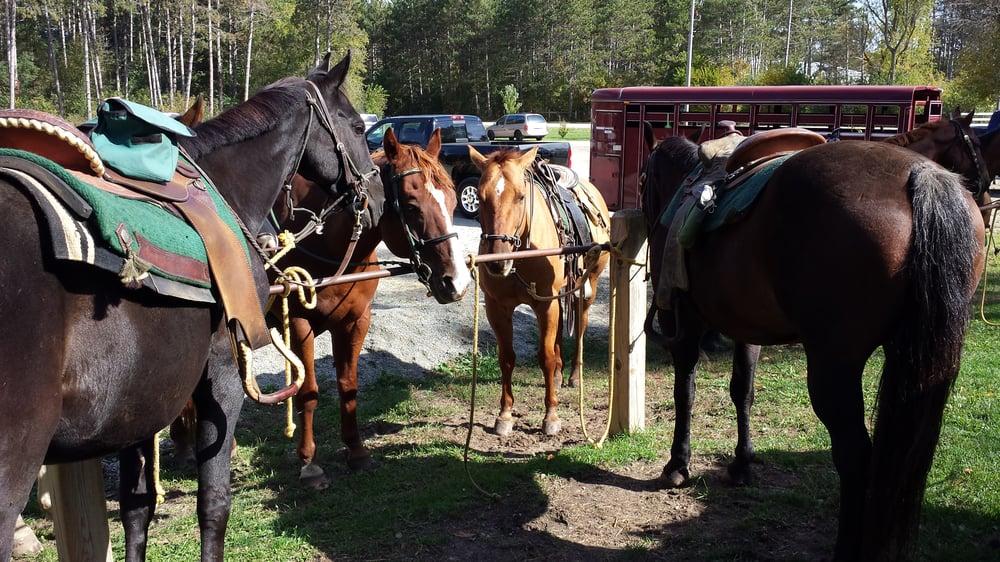 Dream A Horse: Eagle Trail Head, Eagle, WI