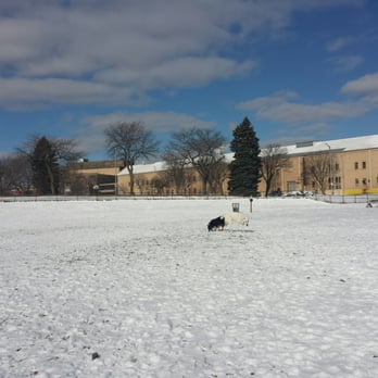 Dog Parks In Milwaukee Wi Area