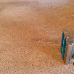 photo of steamex carpet cleaning phoenix az united states hereu0027s our agitator
