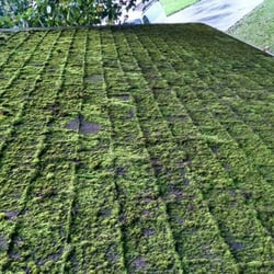 Photo Of NW Moss Removal   Snohomish, WA, United States