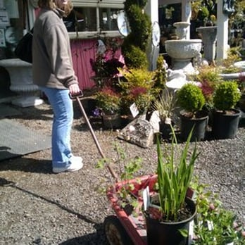 Photo Of Bird S English Garden Nursery Ridgefield Wa United States