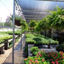 Photo Of Cristinau0027s Garden Center   Dallas, TX, United States