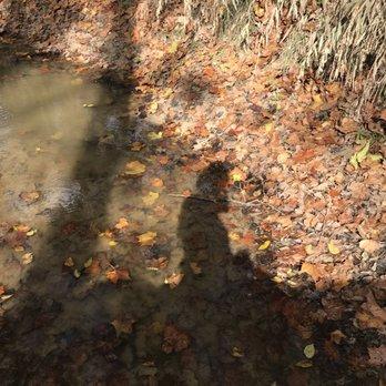 Cypress Trails 116 Photos Amp 123 Reviews Horseback Riding 21415 Cypresswood Dr