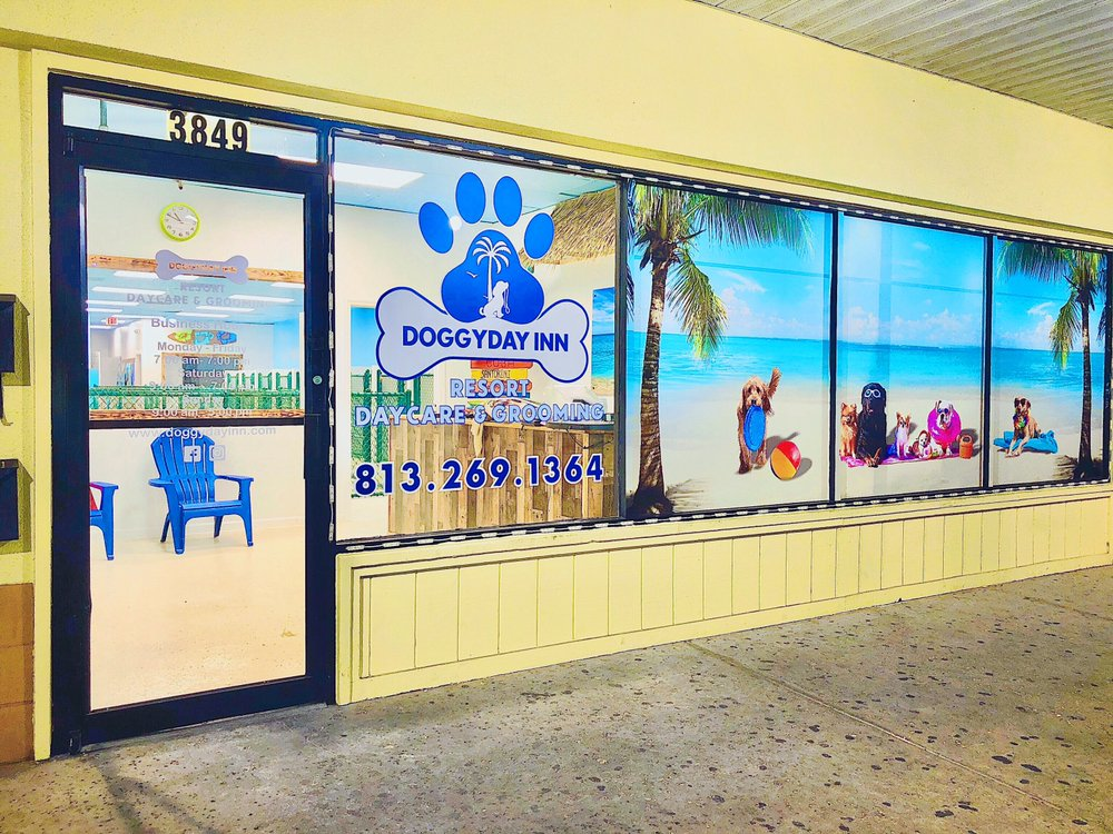 DoggyDay Inn Resort, Daycare & Grooming: 3849 Northdale Blvd Tampa, Tampa, FL