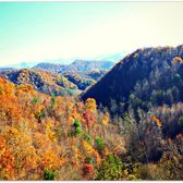 Photo of Navitat Canopy Adventures - Asheville - Barnardsville NC United States. The & Navitat Canopy Adventures - Asheville - 67 Photos u0026 99 Reviews ...