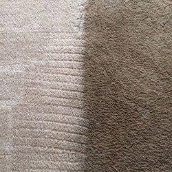Zerorez Davis Weber Carpet Cleaning 803 North 1250 W