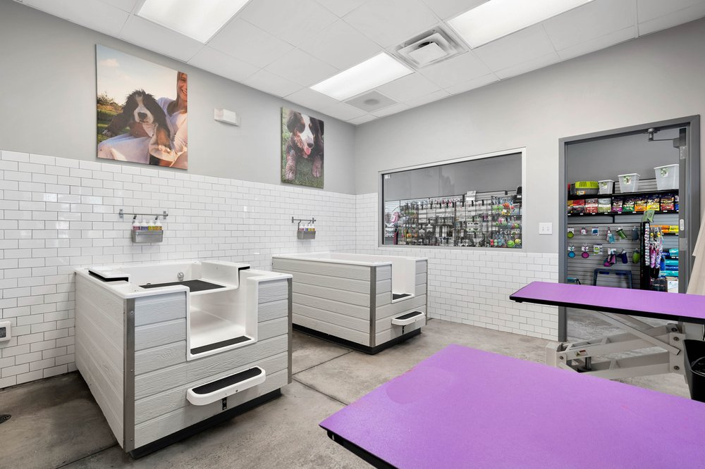 Tazzy & Boo Pet Foods & Grooming