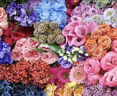 Potomac Floral Wholesale 2403 Linden Ln Silver Spring Md General