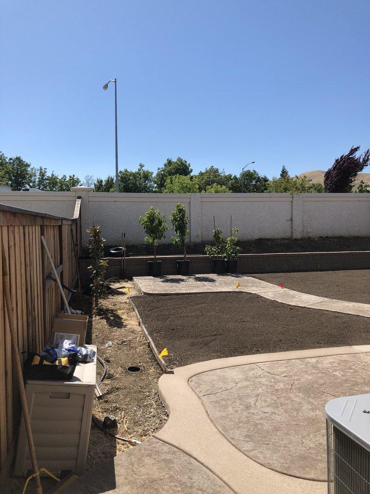 New Look Landscape: Suisun City, CA