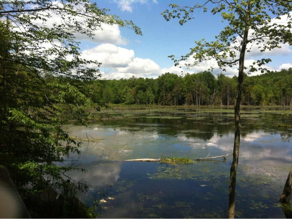 Woodbourne Forest & Wildlife Preserve: State Hwy 29, Montrose, PA
