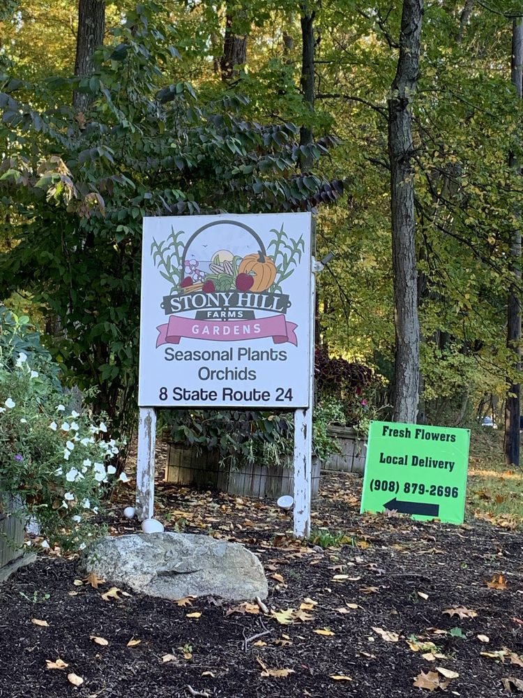 Stony Hill Gardens: 8 State Rt 24, Chester, NJ