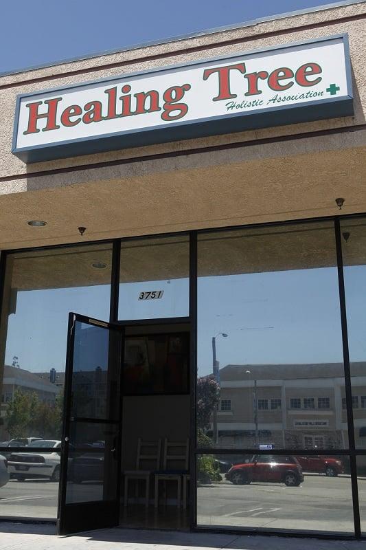 Healing Tree Long Beach Ca