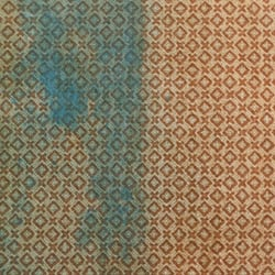 photo of carpet cleaning orlando fl united states beforeafter