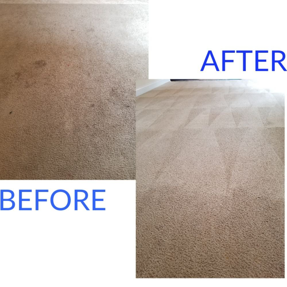 Palmetto Stone and Carpet Care: 2032 Ridgeway Rd, Lugoff, SC