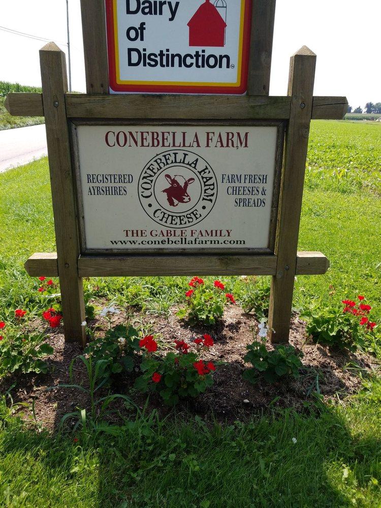 Conabella Farm: 337 Chestnut Tree Rd, Elverson, PA