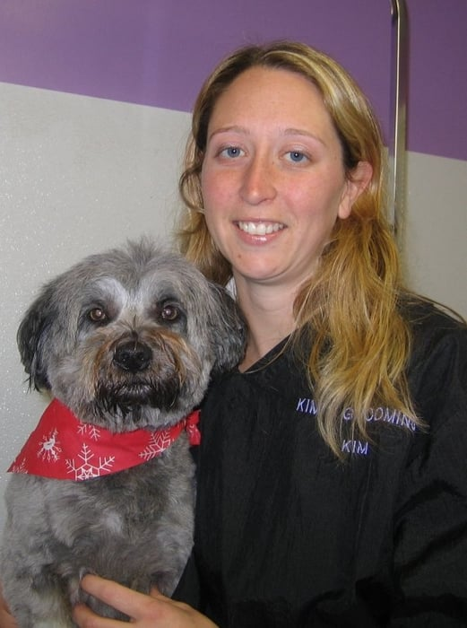 Kim's Dog & Cat Grooming: 181 West State St Rte 202, Granby, MA