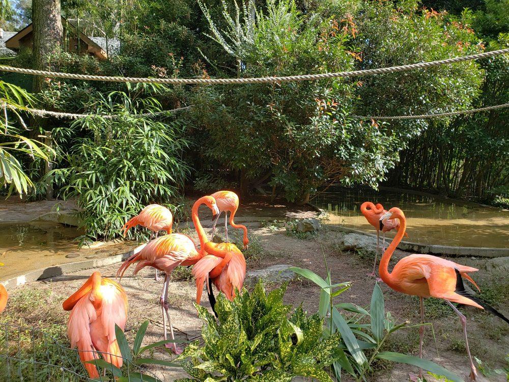 Salisbury Zoological Park: 755 S Park Dr, Salisbury, MD