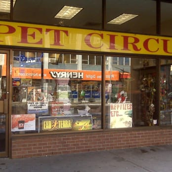 pet circus   last updated june 2017   pet stores   274