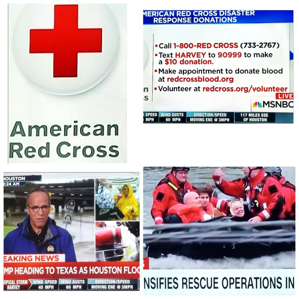 American red cross 13 photos cpr classes 195 willis ave american red cross 13 photos cpr classes 195 willis ave mineola ny phone number yelp 1betcityfo Choice Image