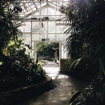 Foster botanical garden 1315 photos 142 reviews botanical gardens 180 n vineyard blvd for Foster botanical garden honolulu