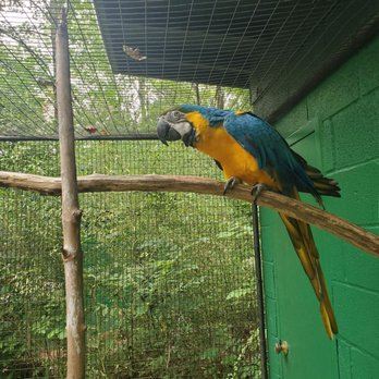 Kentucky Down Under Adventure Zoo - 336 Photos & 95 Reviews
