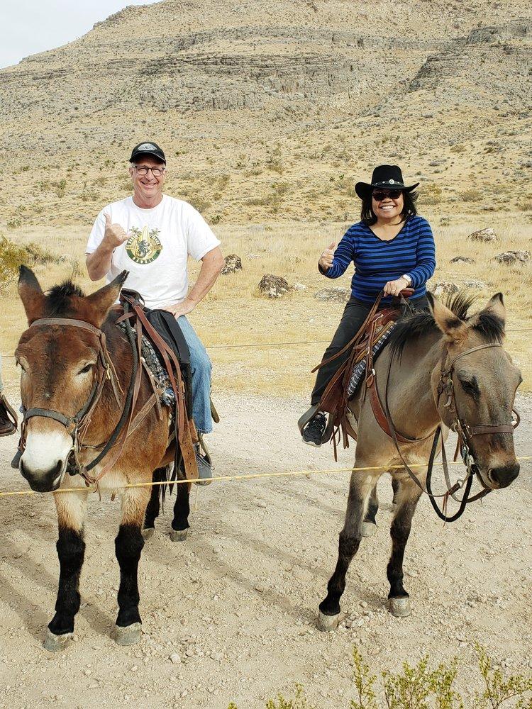 Cowboy Trail Rides: 4053 Fossil Ridge Rd, Las Vegas, NV