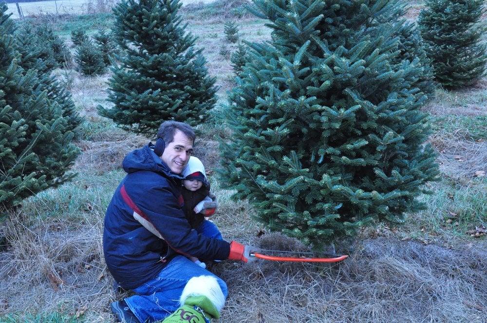 White's Tree Farm: 255 Jericho Rd, Essex Junction, VT