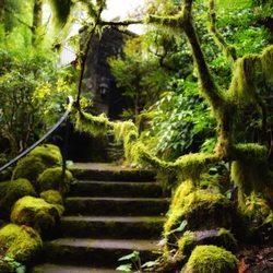 Photo Of Leach Botanical Garden Portland Or United States
