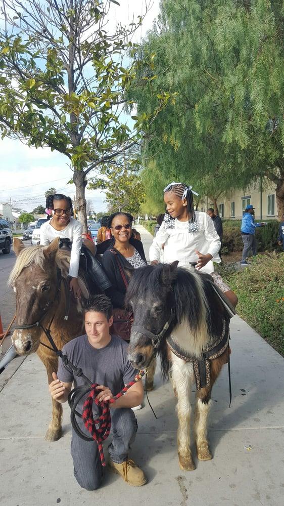 So Cal Animals: 12127 Arora Way, Agua Dulce, CA