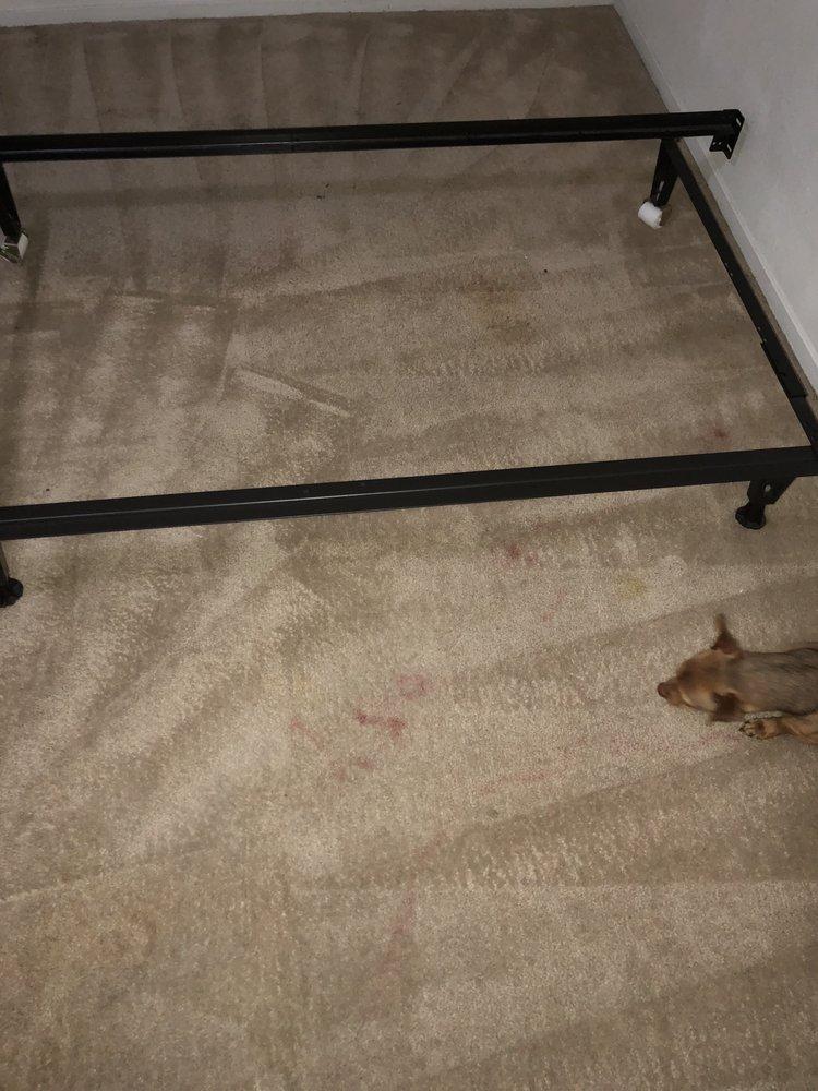 Carpet Cleaning Jackson Mi