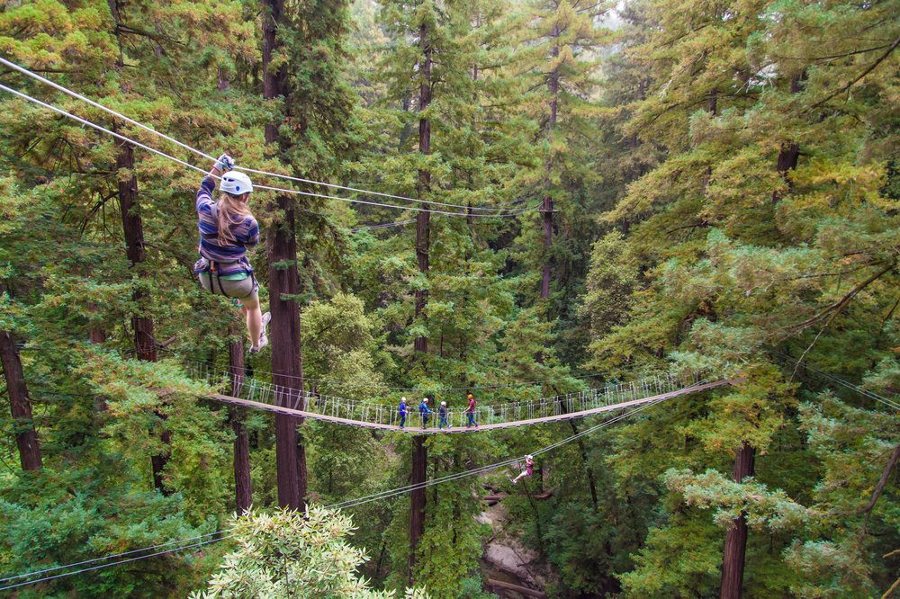 Zip lining in santa cruz