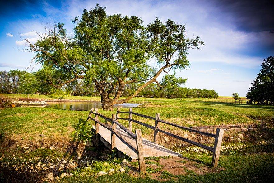 Prairie Hill Vineyard: 21421 W 37th St N, Colwich, KS
