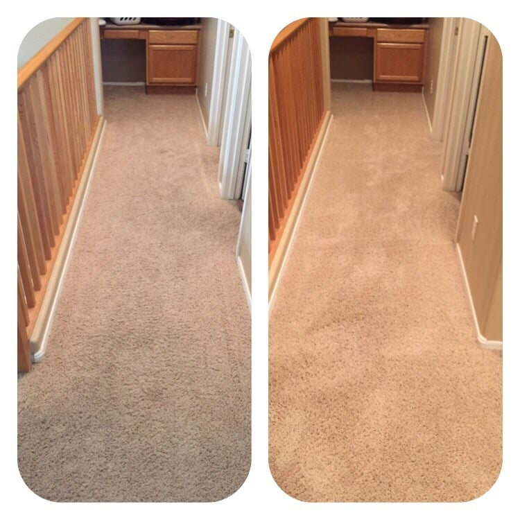 Zerorez Phoenix 60 Photos Amp 170 Reviews Carpet