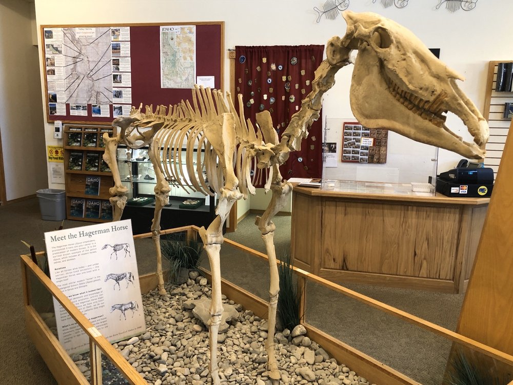 Hagerman Fossil Beds National Monument: 221 N State St, Hagerman, ID