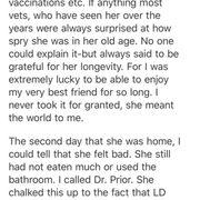 Lifetime Small Animal Hospital - Veterinarians - 2627 Big Horn Ave