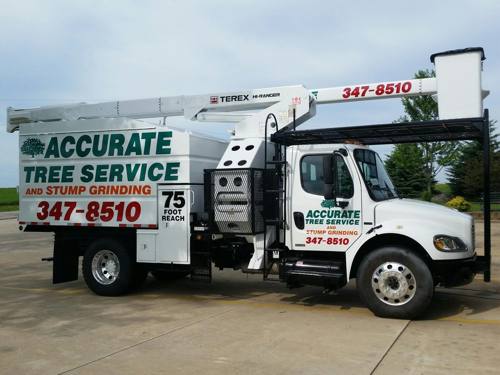 Accurate Tree Service and Stump Grinding: 8509 Elderberry Rd, Madison, WI