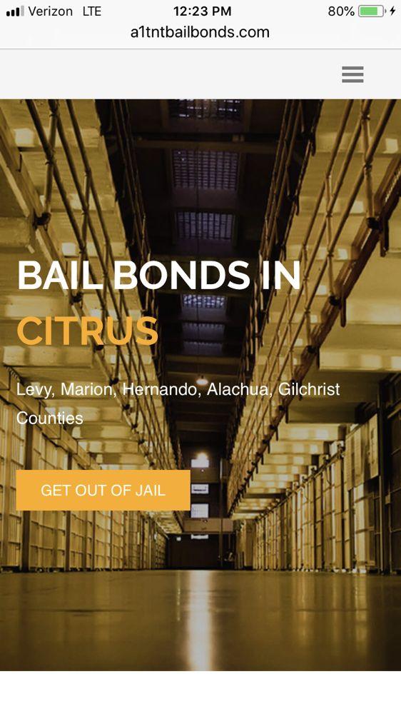 A1 TNT Bail Bonds: 3778 W Gulf To Lake Hwy, Lecanto, FL