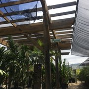 Photo Of Growing Grounds Nursery Tree Outlet Camarillo Ca United States