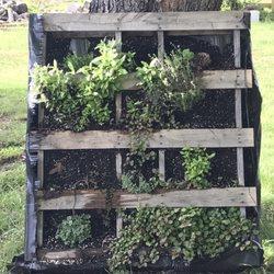 Evergreen Lavender Farm - Temp  CLOSED - Attraction Farms